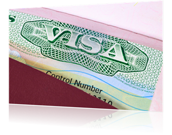 L1 Blanket Visa Fees - Blankets & Throws Ideas